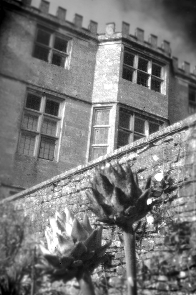 Pinhole image of the National Trust property at Newark Park, Gloucestershire